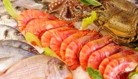 11月7~9日,青岛渔博会 汉斯曼集团检验服务亮点抢先看